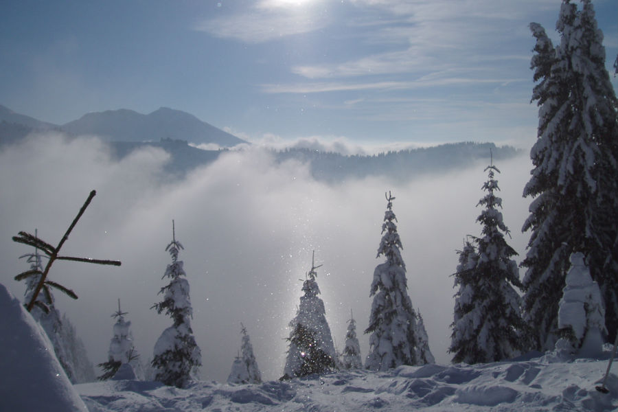 Morzine and Avoriaz in winter